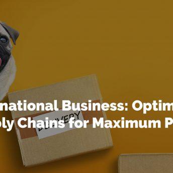International Business: Optimizing Supply Chains for Maximum Profit